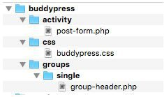 BuddyPress Customization