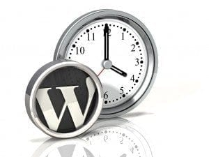 WP Support Services clock