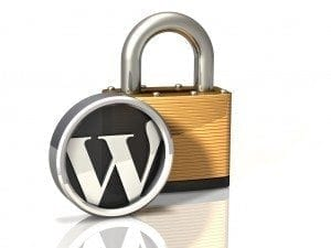 WP Support Services security Policy
