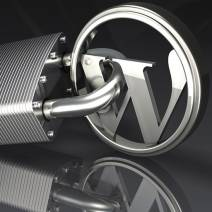 wordpress logo padlocked secure your website