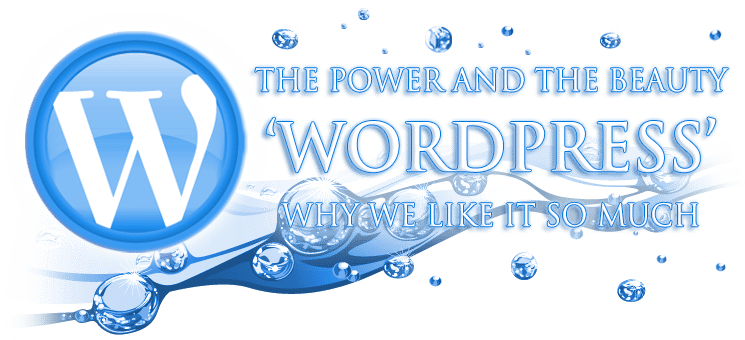 WP Support Services, the power and the beauty of wordpress